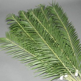 3ft Artificial Palm Branch