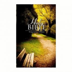 KJV Bible Large Print Paperback