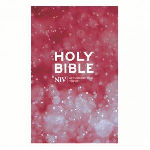 NIV Beacon Bible Paperback x 10 Pack